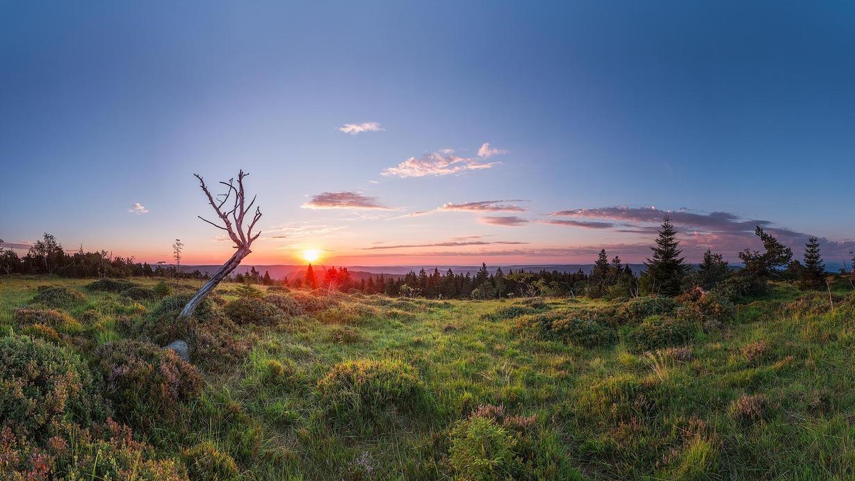 WRO Kachel Bild Landschaft